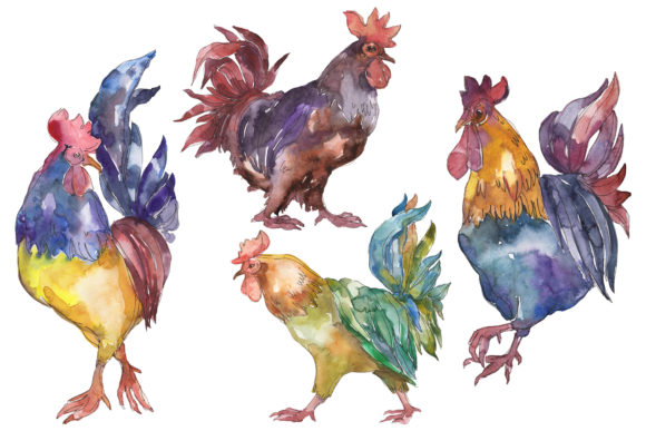 Print on Demand: Farm Animals: Cock Watercolor  Graphic Illustrations By MyStocks