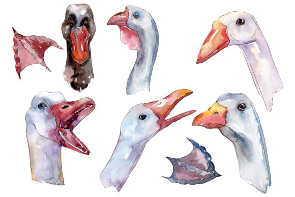 Download Free Farm Animals Goose Heads Watercolor Graphic By Mystocks for Cricut Explore, Silhouette and other cutting machines.