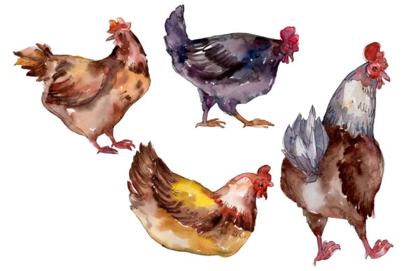 Print on Demand: Farm Animals: Hen Watercolor Png Graphic Illustrations By MyStocks
