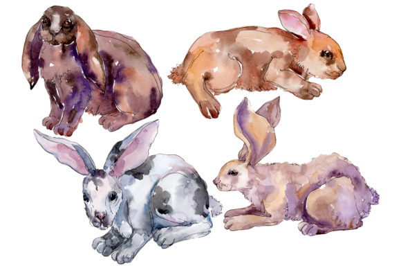 Download Free Farm Animals Rabbit Watercolor Png Graphic By Mystocks for Cricut Explore, Silhouette and other cutting machines.