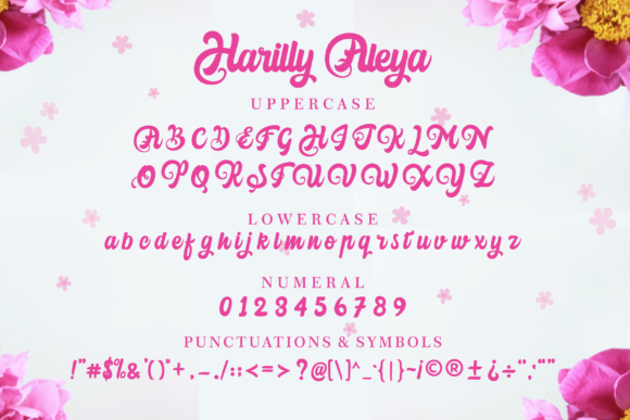 Print on Demand: Harilly Aleya Script & Handwritten Font By Holydie Studio - Image 4