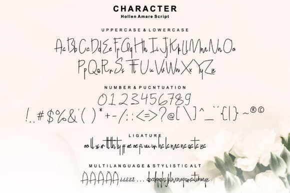 Hollen Amare Font By glyphstyle Image 6