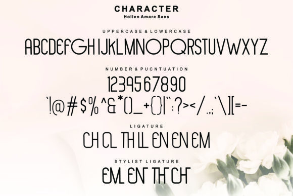 Hollen Amare Font By glyphstyle Image 7