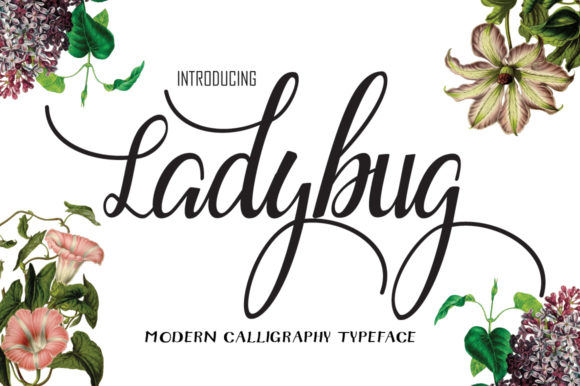 Print on Demand: Ladybug Script & Handwritten Font By Microcreative
