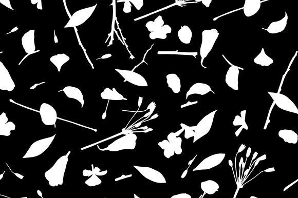 Download Free Leaves Branches And Flower Texture Graphic By Milaski for Cricut Explore, Silhouette and other cutting machines.