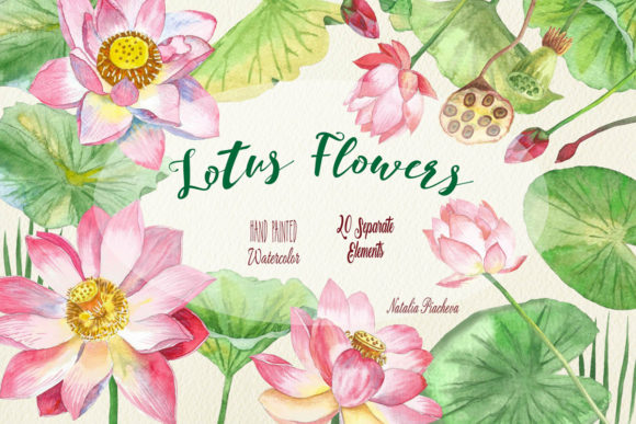 Print on Demand: Lotus Flowers Watercolor Clipart Graphic Illustrations By natalia.piacheva