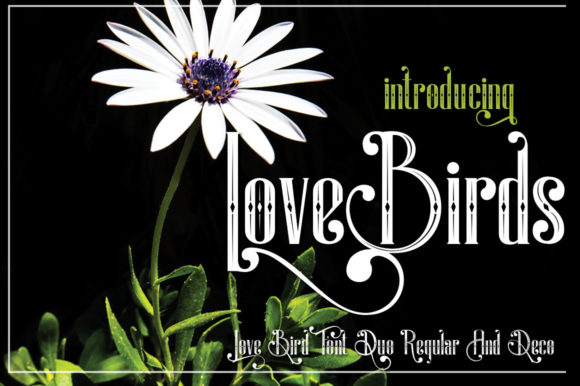 Print on Demand: LoveBirds Display Font By jehansyah251 - Image 4