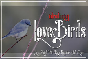 LoveBirds Font By jehansyah251