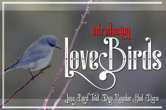 Print on Demand: LoveBirds Display Font By jehansyah251