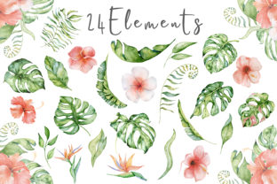 Lovely Sloths Watercolor Animals Clipart Graphic Illustrations By EvgeniiasArt 3
