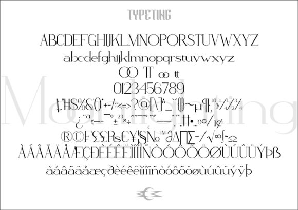 Print on Demand: Moonlighting Serif Font By Typeting Studio - Image 3