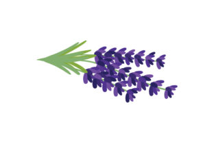 National Flower - Lavender Portugal Craft Cut File By Creative Fabrica Crafts