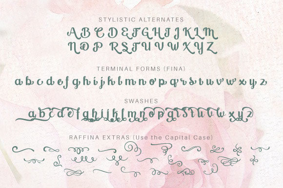 Print on Demand: Raffina Script & Handwritten Font By VNM Creative Studio - Image 11