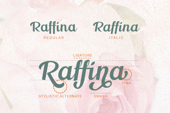 Print on Demand: Raffina Script & Handwritten Font By VNM Creative Studio - Image 12