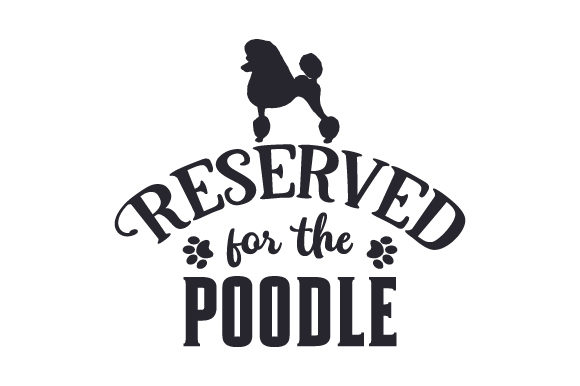 Reserved for the Poodle Dogs Craft Cut File By Creative Fabrica Crafts