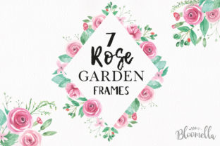 Rose Garden Pink Watercolor Flower Set Graphic By Bloomella