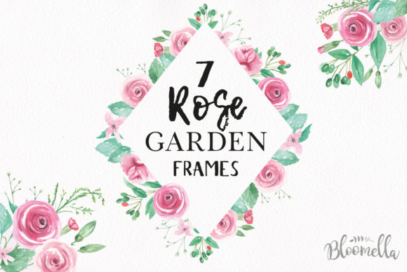 Rose Garden Pink Watercolor Flower Set Graphic Illustrations By Bloomella