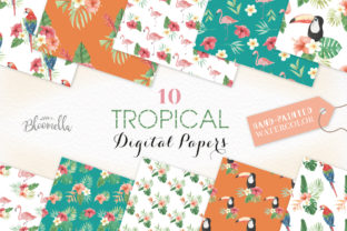 Seamless Patterns Tropical Flamingo Set Graphic By Bloomella