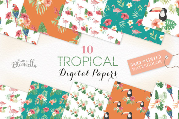 Seamless Patterns Tropical Flamingo Set Graphic By Bloomella Image 1