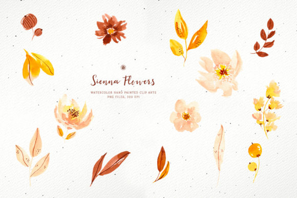 Print on Demand: Sienna Flowers Graphic Illustrations By webvilla - Image 5