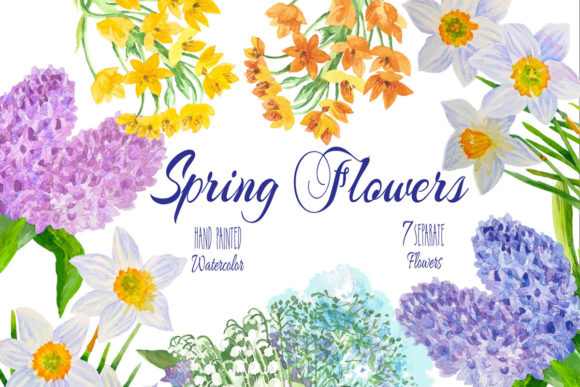 Print on Demand: Spring Flowers Watercolor Clipart Graphic Illustrations By natalia.piacheva