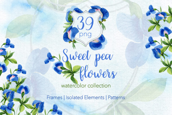 Print on Demand: Sweet Pea Flowers Watercolor Png Graphic Illustrations By MyStocks