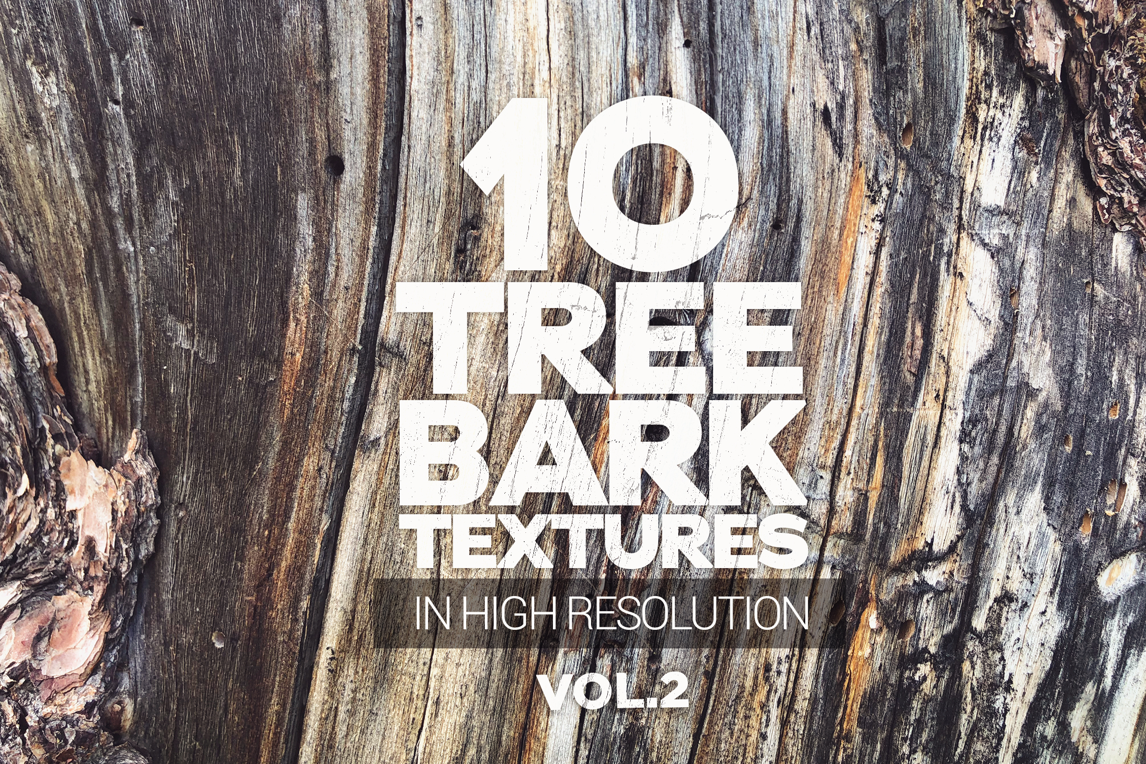 Download Free Tree Bark Textures X10 Vol2 Graphic By Smartdesigns Creative for Cricut Explore, Silhouette and other cutting machines.