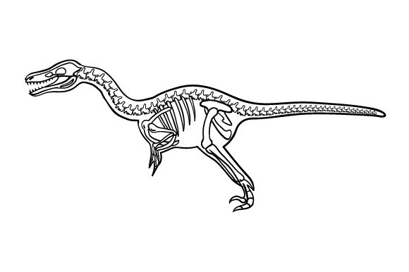Download Free Velociraptor Outline With Skeleton Svg Cut File By Creative for Cricut Explore, Silhouette and other cutting machines.