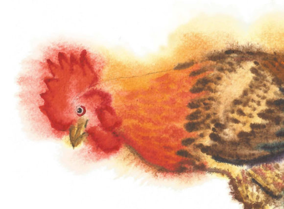 Print on Demand: Watercolor Roosters Clipart Graphic Illustrations By natalia.piacheva - Image 4
