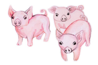 Watercolor Design Pigs Craft Design By Creative Fabrica Crafts