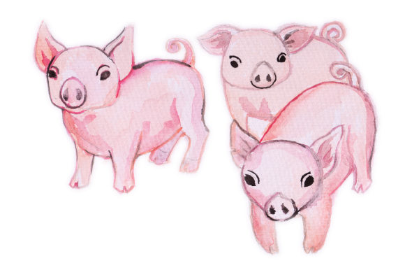 Watercolor Design Pigs Designs & Drawings Craft Cut File By Creative Fabrica Crafts