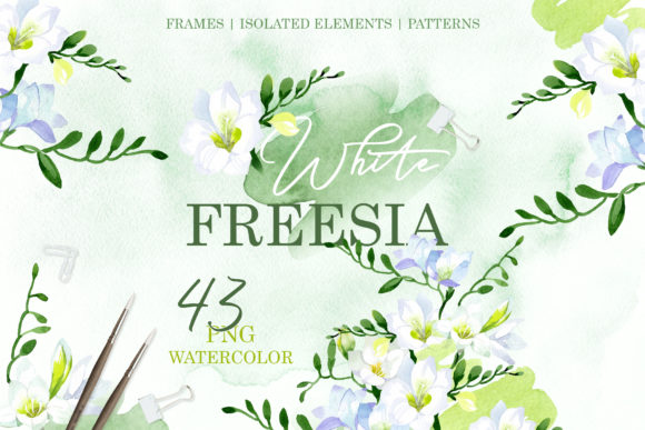 Download Free White Freesia Watercolor Graphic By Mystocks Creative Fabrica for Cricut Explore, Silhouette and other cutting machines.