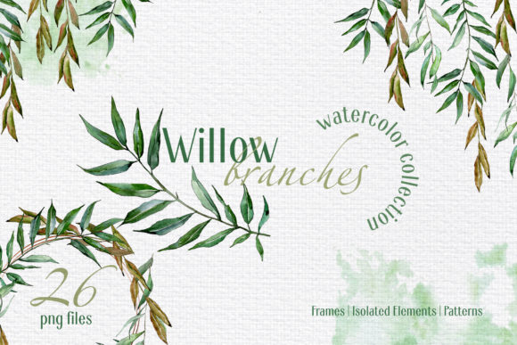 Print on Demand: Willow Branches Watercolor Png Graphic Illustrations By MyStocks - Image 1