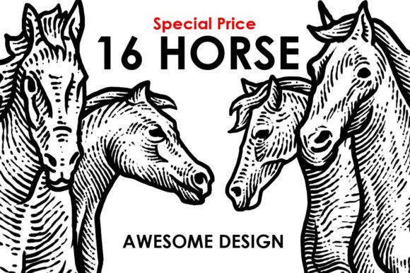 Print on Demand: 16 Horse Awesome Design Graphic Illustrations By sebrodbrick