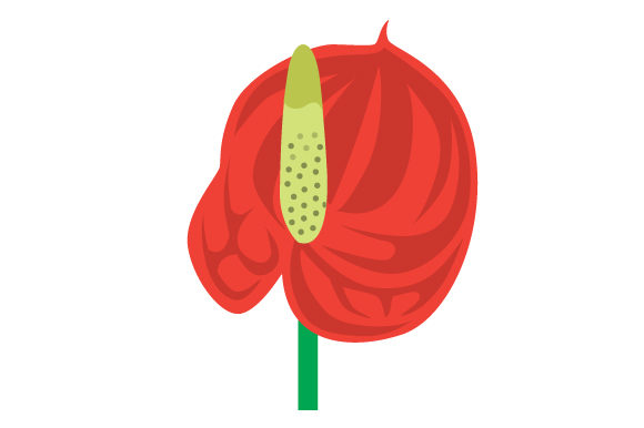 Download Free Anthurium Svg Cut File By Creative Fabrica Crafts Creative Fabrica for Cricut Explore, Silhouette and other cutting machines.