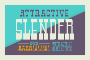 Attractive Slender Font By Keithzo (7NTypes)