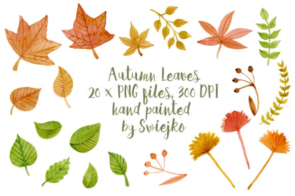 Print on Demand: Autumn Leaves Graphic Illustrations By swiejko