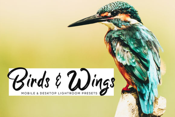 Print on Demand: Birds & Wings Lightroom Presets Graphic Actions & Presets By Creative Tacos