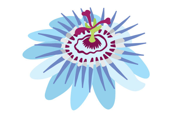 Download Free Blue Passion Flower Svg Cut File By Creative Fabrica Crafts for Cricut Explore, Silhouette and other cutting machines.
