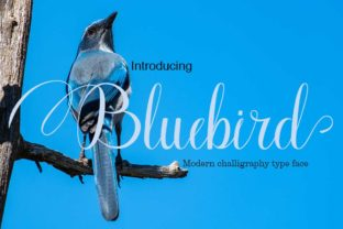 Print on Demand: Bluebird Script & Handwritten Font By parawtype