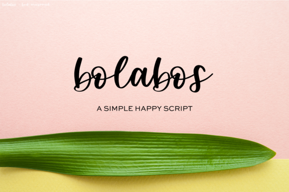 Print on Demand: Bolabos Script & Handwritten Font By BeckMcCormick