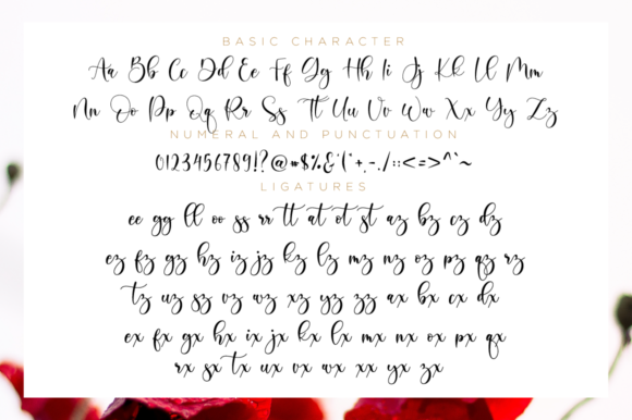 Print on Demand: Boshela Script Script & Handwritten Font By NissaStudio - Image 11