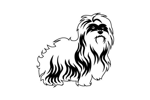 Brown Havanese Dog Dogs Craft Cut File By Creative Fabrica Crafts - Image 2