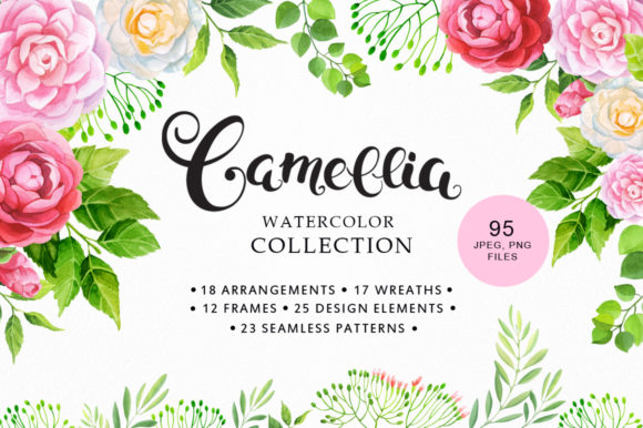 Camellia Watercolor Collection Graphic By Nata Art Graphic
