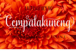 Cempalakuneng Font By Ogex86