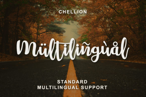Print on Demand: Chellion Script & Handwritten Font By LetterBeary - Image 4
