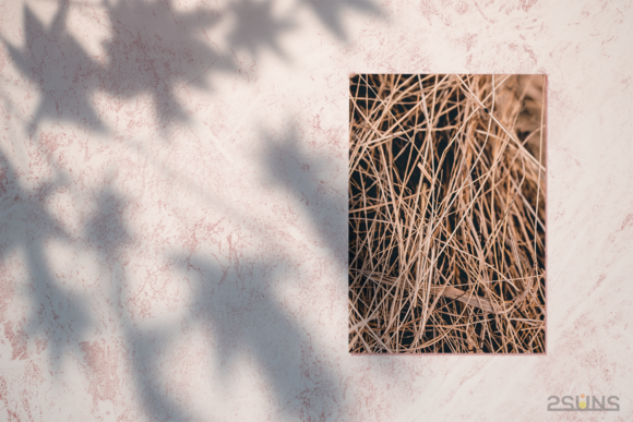 Download Textures Photoshop 30 Nature
