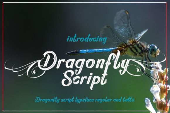 Print on Demand: Dragonfly Script Script & Handwritten Font By jehansyah251