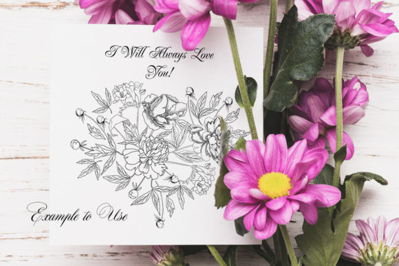Download Free Flowers Sketches Set Digital Clipart Graphic By Natalia Piacheva Creative Fabrica for Cricut Explore, Silhouette and other cutting machines.