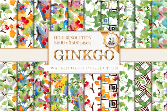 Print on Demand: Ginkgo Watercolor Graphic Illustrations By MyStocks